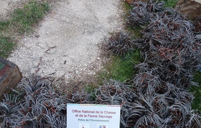 Chasse: 2.000 pièges destinés à détruire des espèces protégées saisis dans le Var 640x4167