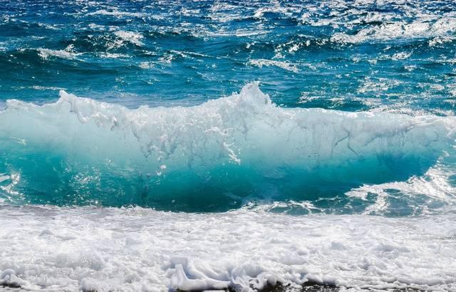 G7 parlementaire : Une « urgence » à protéger les océans en tant que « bien commun » 640x4769