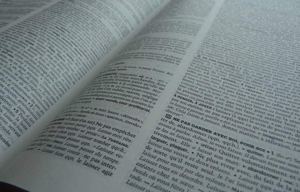 Enfirouaper, anticasseurs, zythologie... Les mots nouveaux du «Petit Robert» 960x6645