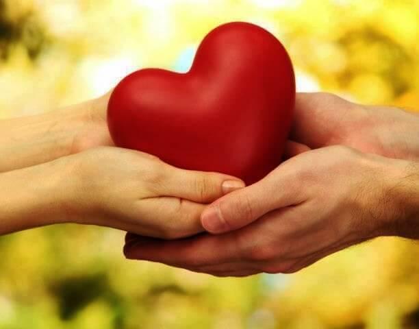Votre cœur est celui qui dit à votre tête que vous êtes prêt pour l'amour Amour211