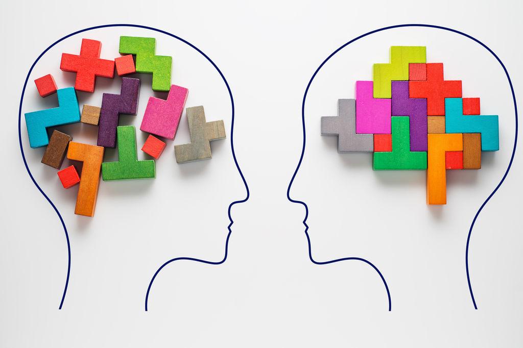 Le cerveau des femmes vieillit moins vite que celui des hommes Le-cer10