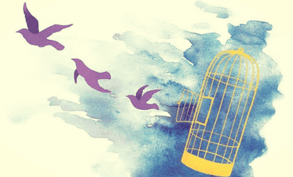 S'excuser fréquemment, ou comment l'excès affecte l'estime de soi Oiseau10