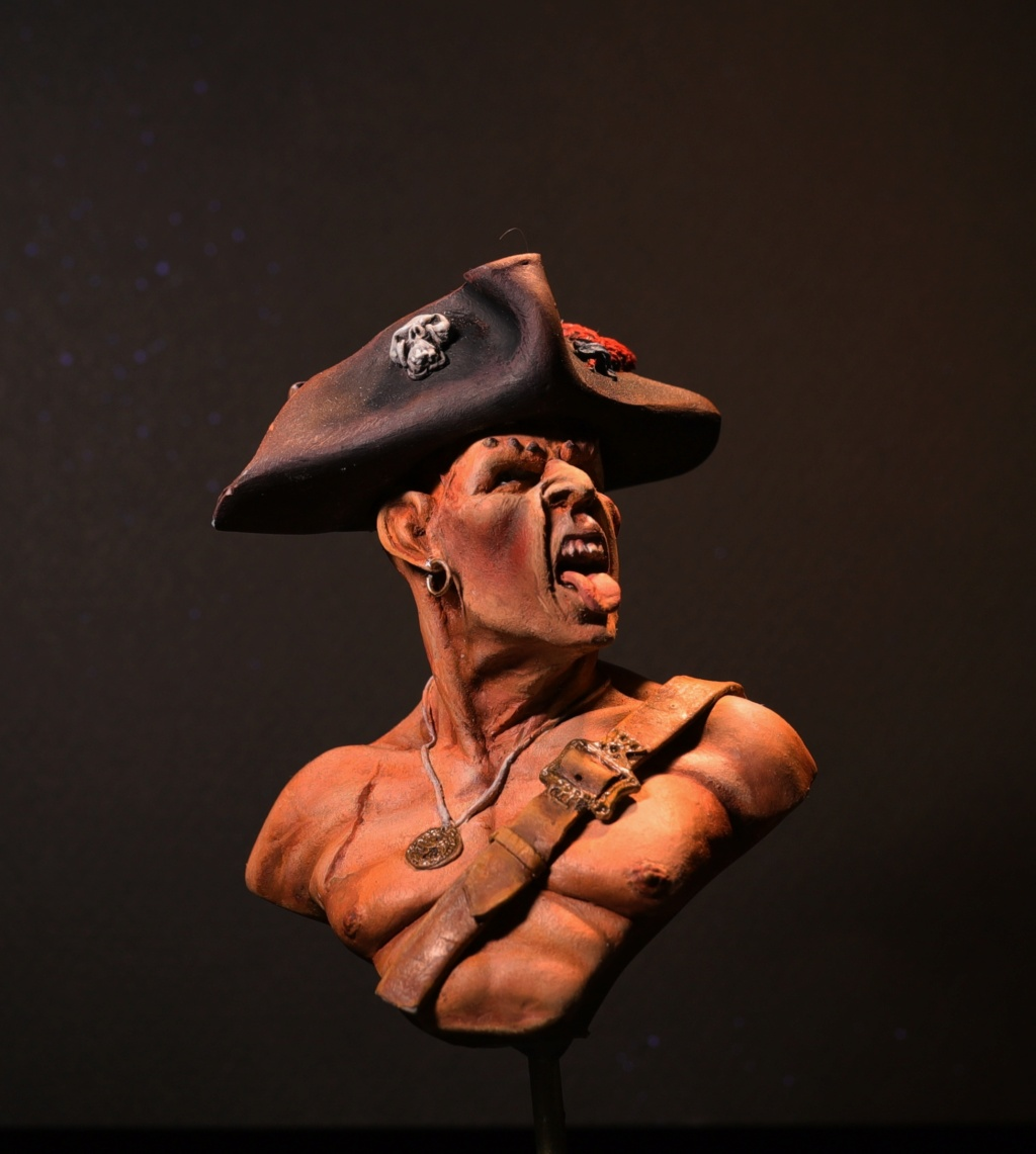 Pirate des caraïbes - Définitif Pirate14