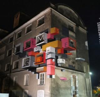 [street art-rue et manifs] Peinture fraîche, à Lyon 2019, 2020 ET 2021 - Page 4 A1071