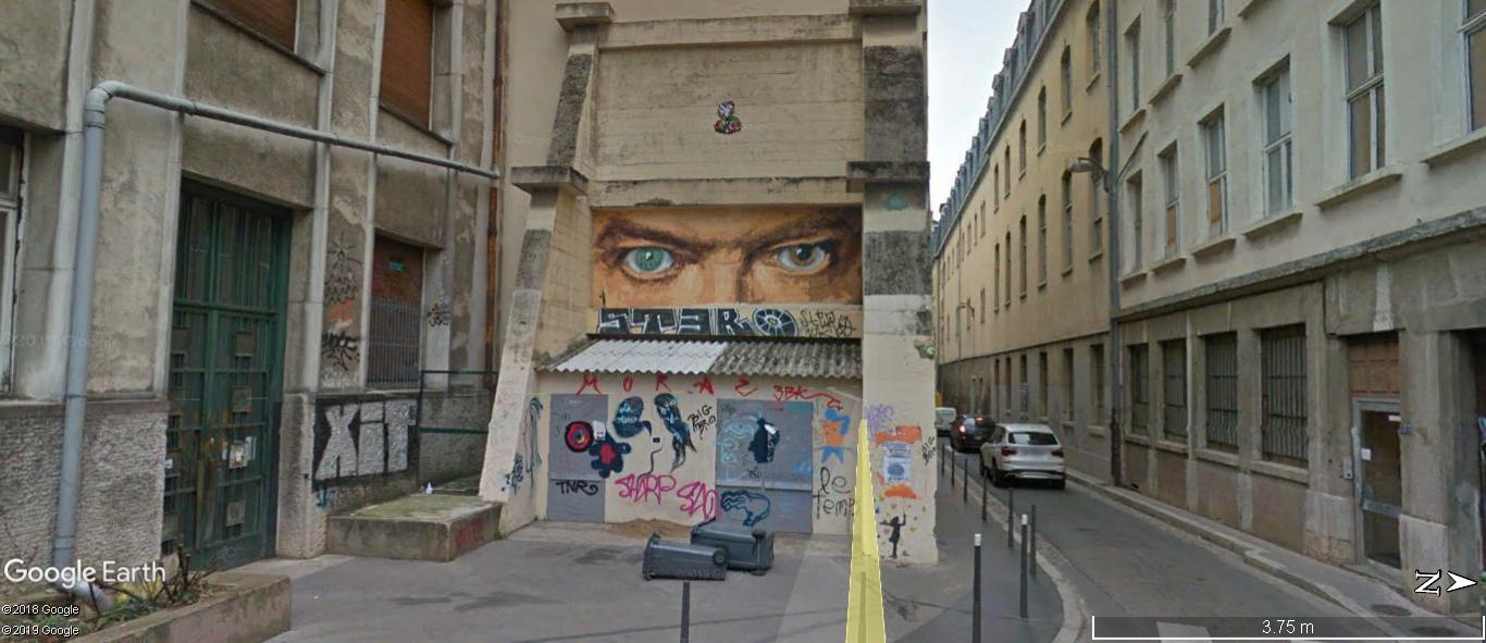 [street art-rue et manifs] Peinture fraîche, à Lyon 2019 et 2020 - Page 5 A1091