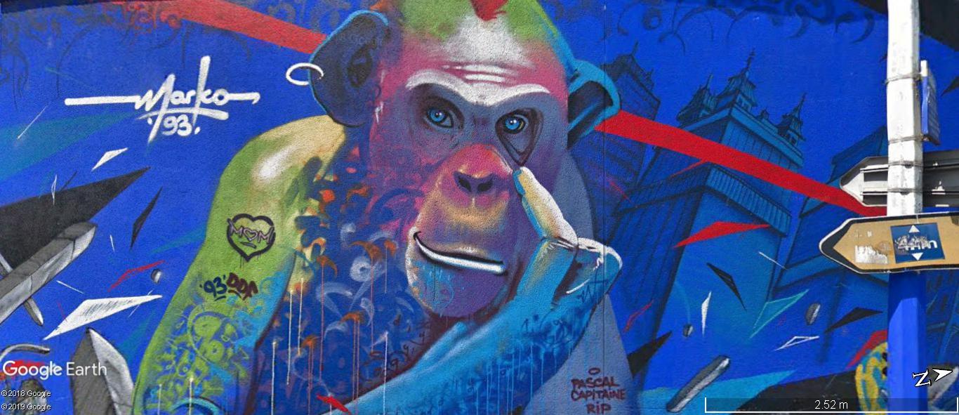 [street art-rue et manifs] Peinture fraîche, à Lyon 2019 et 2020 - Page 6 A1119