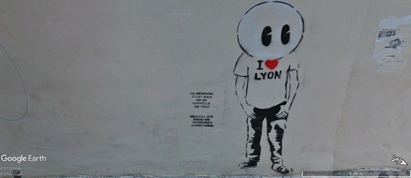 [street art-rue et manifs] Peinture fraîche, à Lyon 2019, 2020 ET 2021 - Page 9 A1149