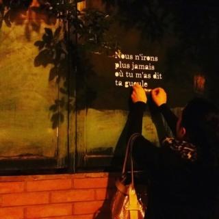 [street art-rue et manifs] Peinture fraîche, à Lyon 2019 et 2020 A1160