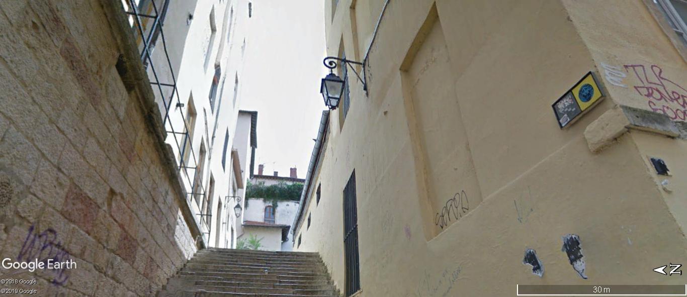 [street art-rue et manifs] Peinture fraîche, à Lyon 2019 - Page 8 A1233