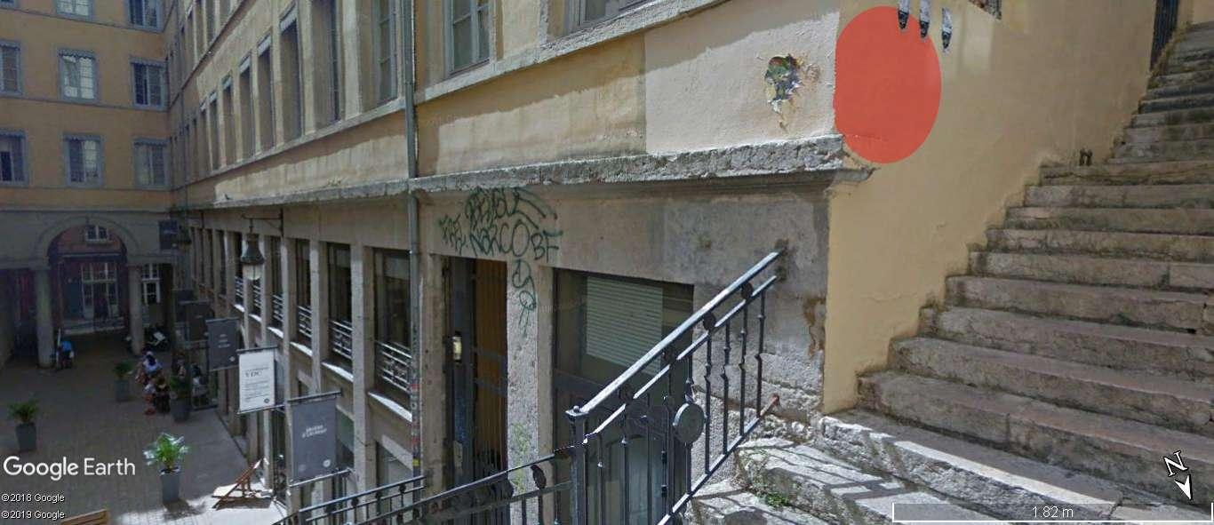 [street art-rue et manifs] Peinture fraîche, à Lyon 2019, 2020 ET 2021 - Page 15 A1241
