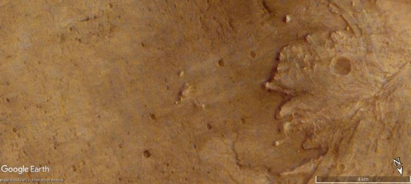 L'image du mois de MARS 2021 - Page 2 A1986