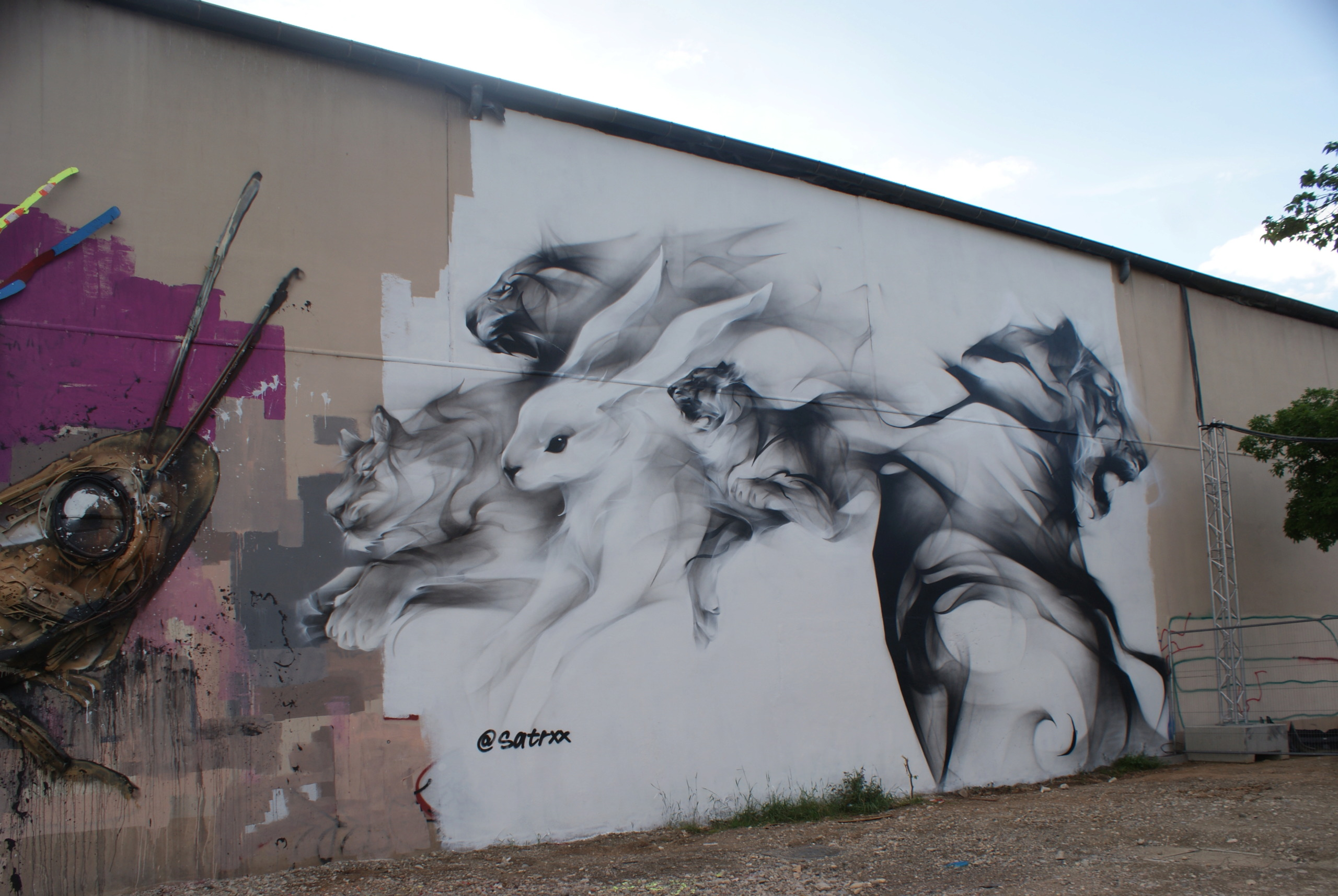 [street art-rue et manifs] Peinture fraîche, à Lyon 2019 - Page 2 Dsc05010