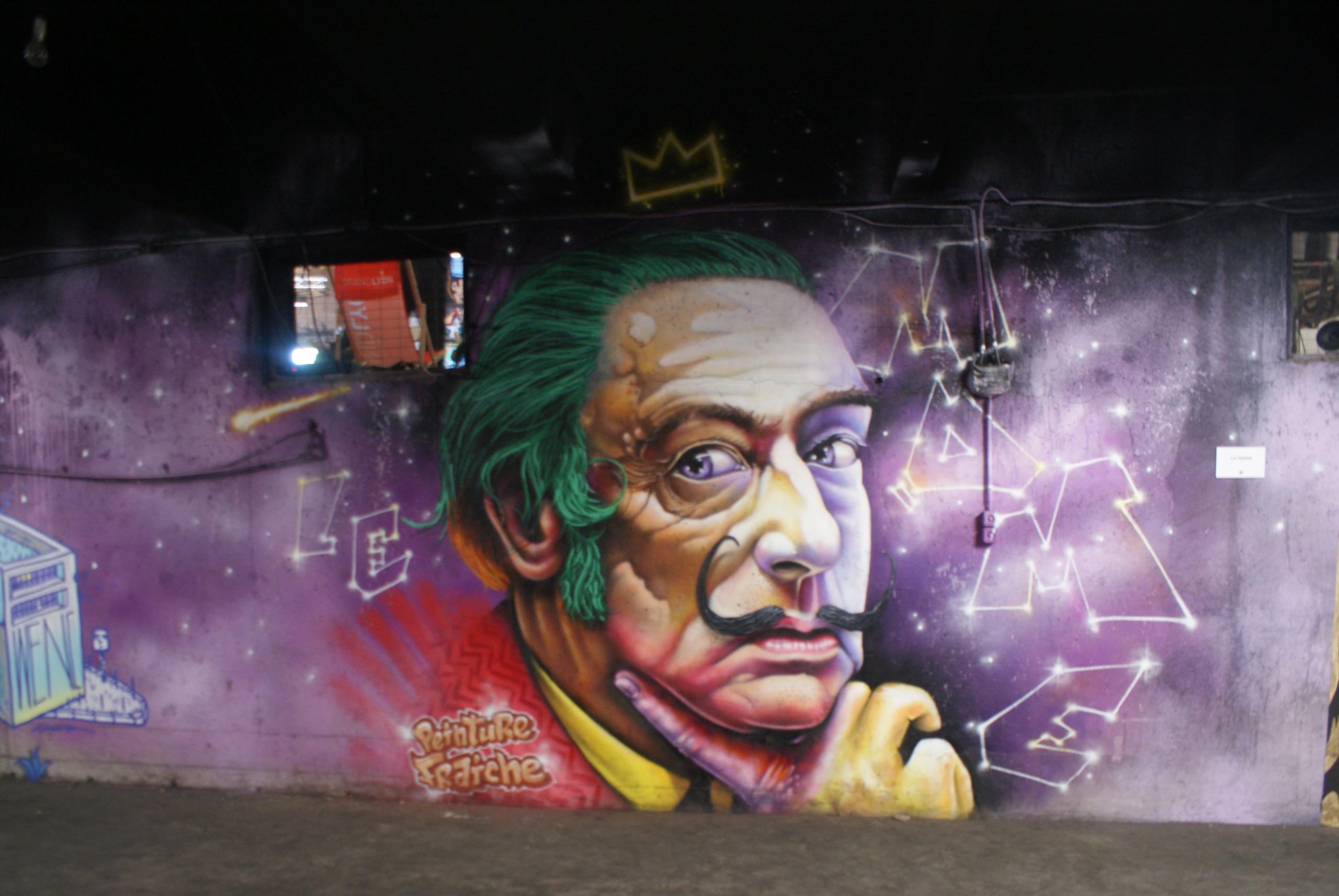 [street art-rue et manifs] Peinture fraîche, à Lyon 2019 Dsc05112