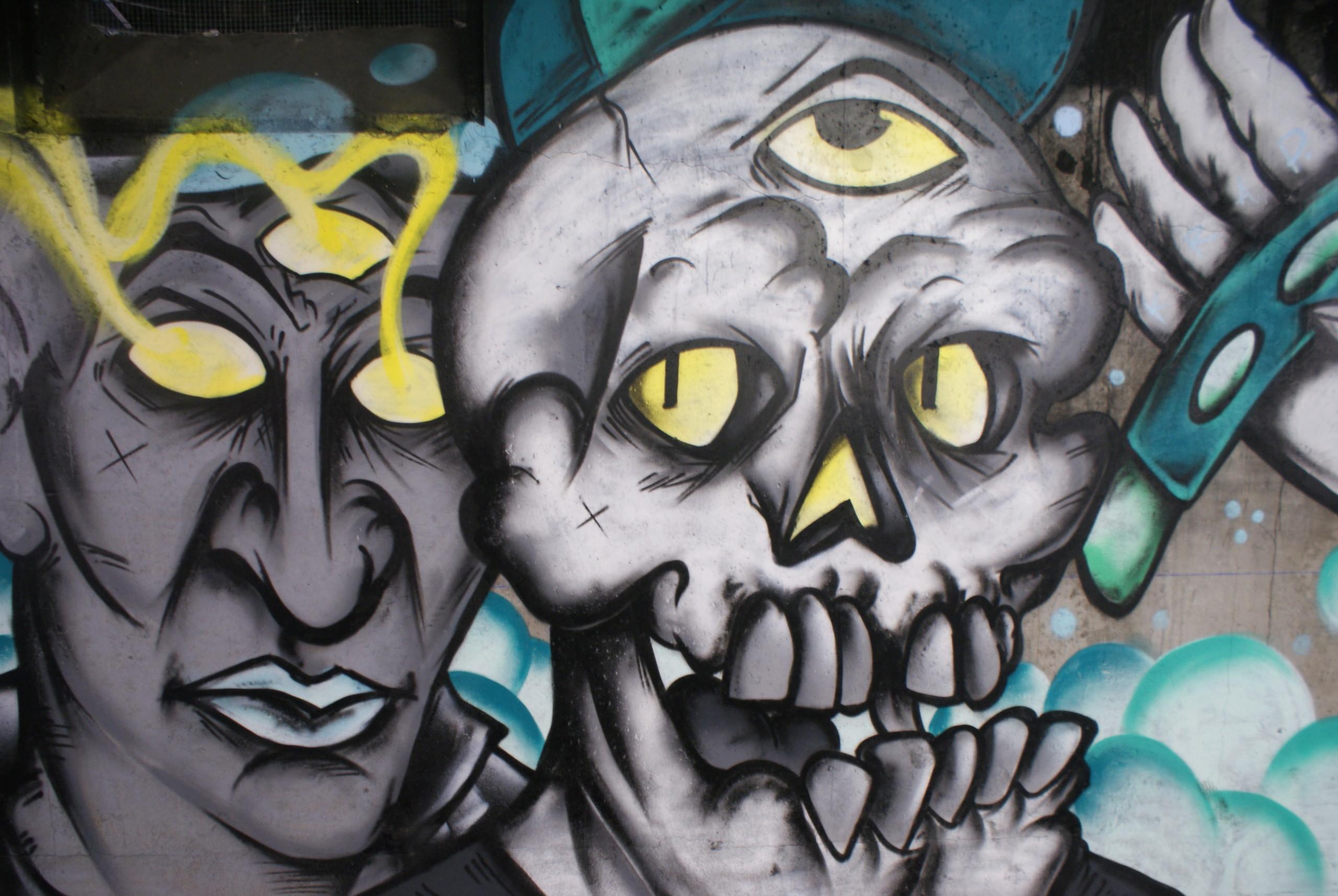 [street art] Peinture fraîche, à Lyon - Page 2 Dsc05118