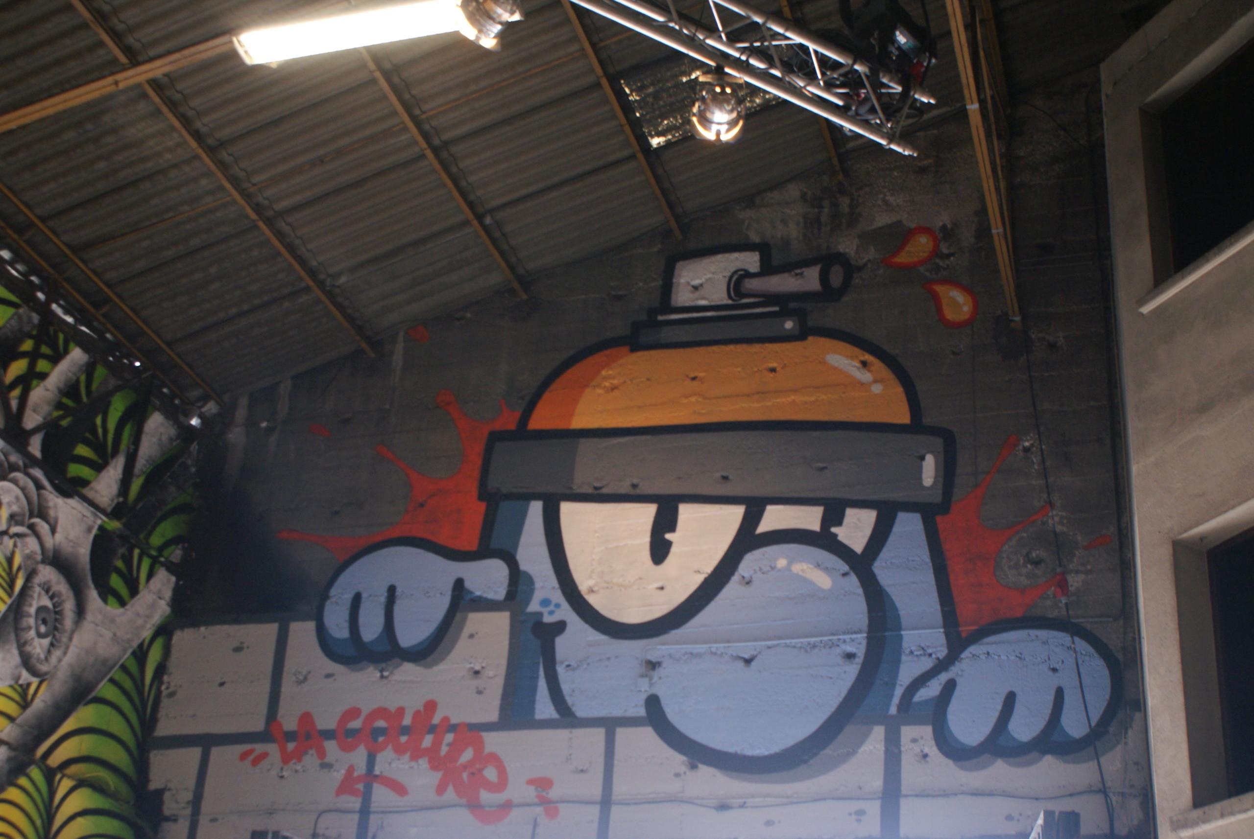 [street art] Peinture fraîche, à Lyon - Page 2 Dsc05119
