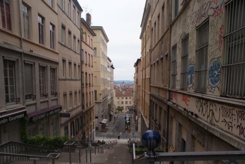 [street art-rue et manifs] Peinture fraîche, à Lyon 2019 - Page 7 Dsc05420