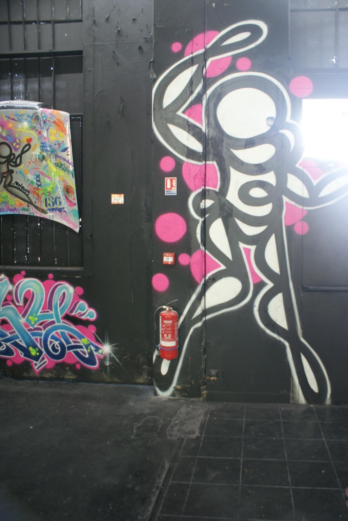 [street art-rue et manifs] Peinture fraîche, à Lyon 2019 - Page 12 Dsc05519