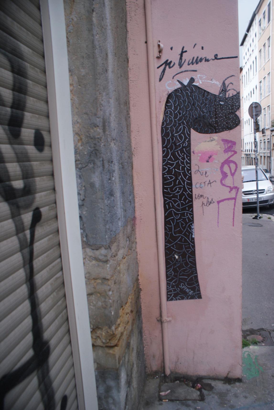 [street art-rue et manifs] Peinture fraîche, à Lyon 2019 - Page 16 Dsc05817