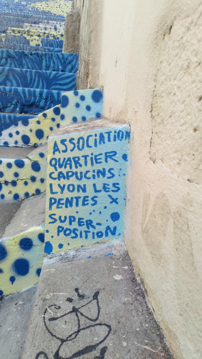 [street art-rue et manifs] Peinture fraîche, à Lyon 2019 et 2020 - Page 6 Dsc_0714
