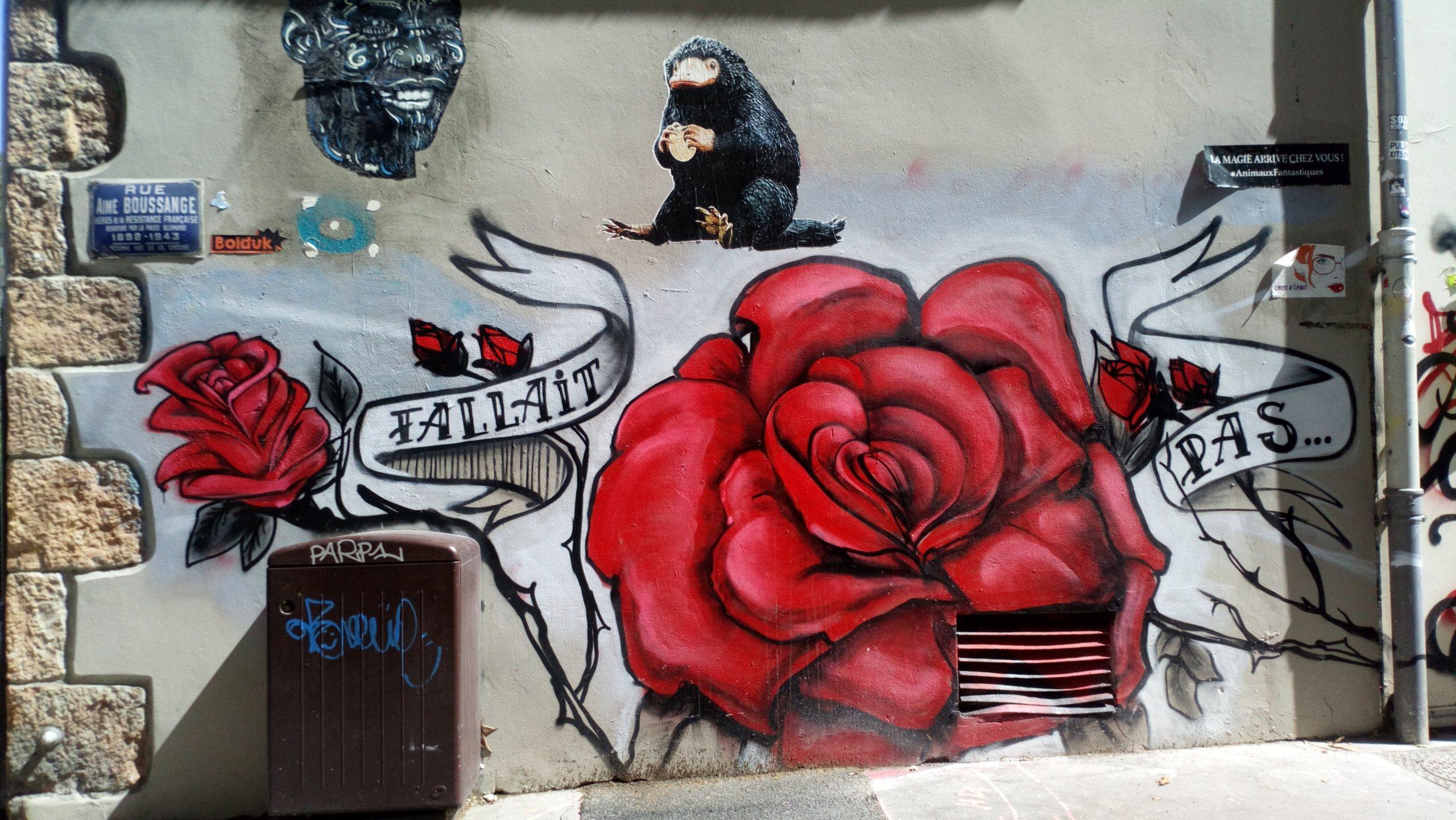 [street art-rue et manifs] Peinture fraîche, à Lyon 2019 et 2020 - Page 6 Dsc_0812