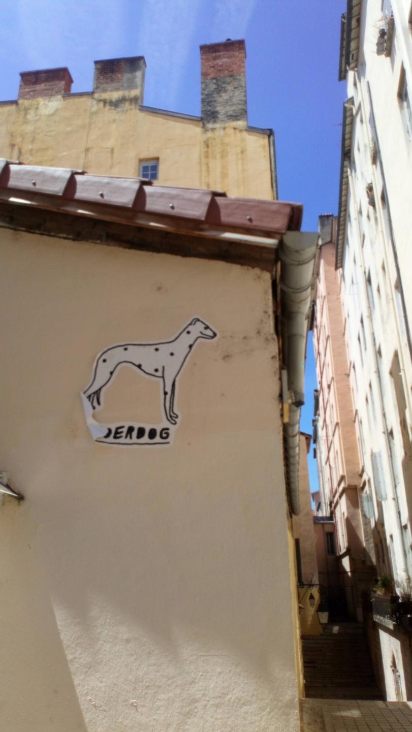 [street art-rue et manifs] Peinture fraîche, à Lyon 2019 et 2020 - Page 6 Dsc_0813