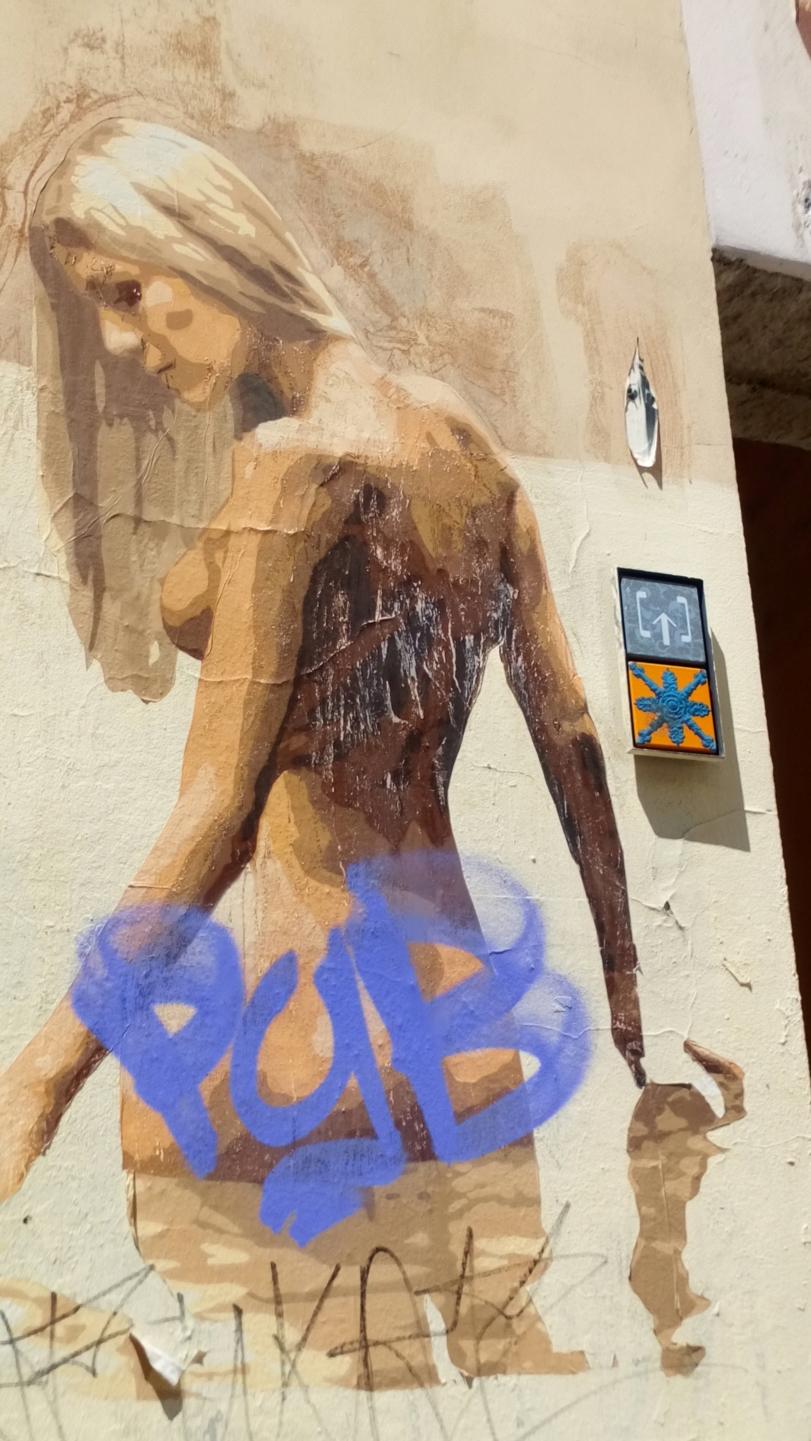 [street art-rue et manifs] Peinture fraîche, à Lyon 2019 et 2020 - Page 6 Dsc_0821