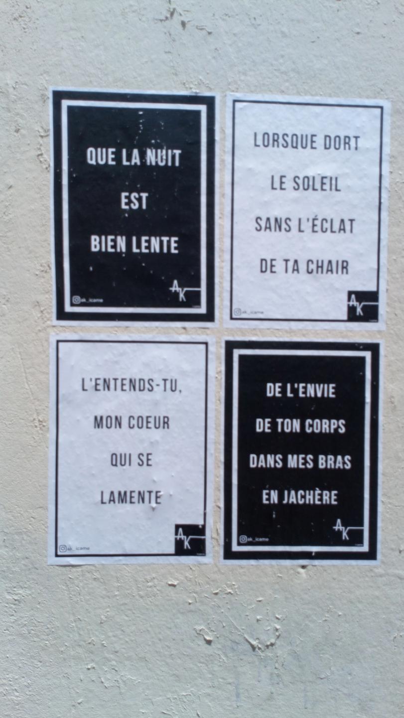 [street art-rue et manifs] Peinture fraîche, à Lyon 2019, 2020 ET 2021 - Page 9 Dsc_0867