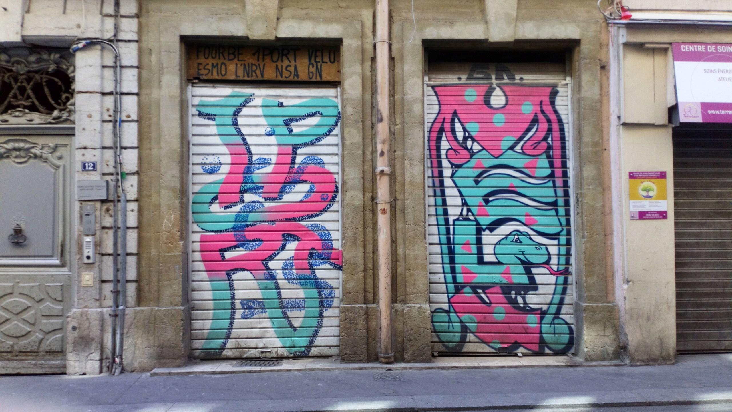 [street art-rue et manifs] Peinture fraîche, à Lyon 2019 - Page 10 Dsc_0881