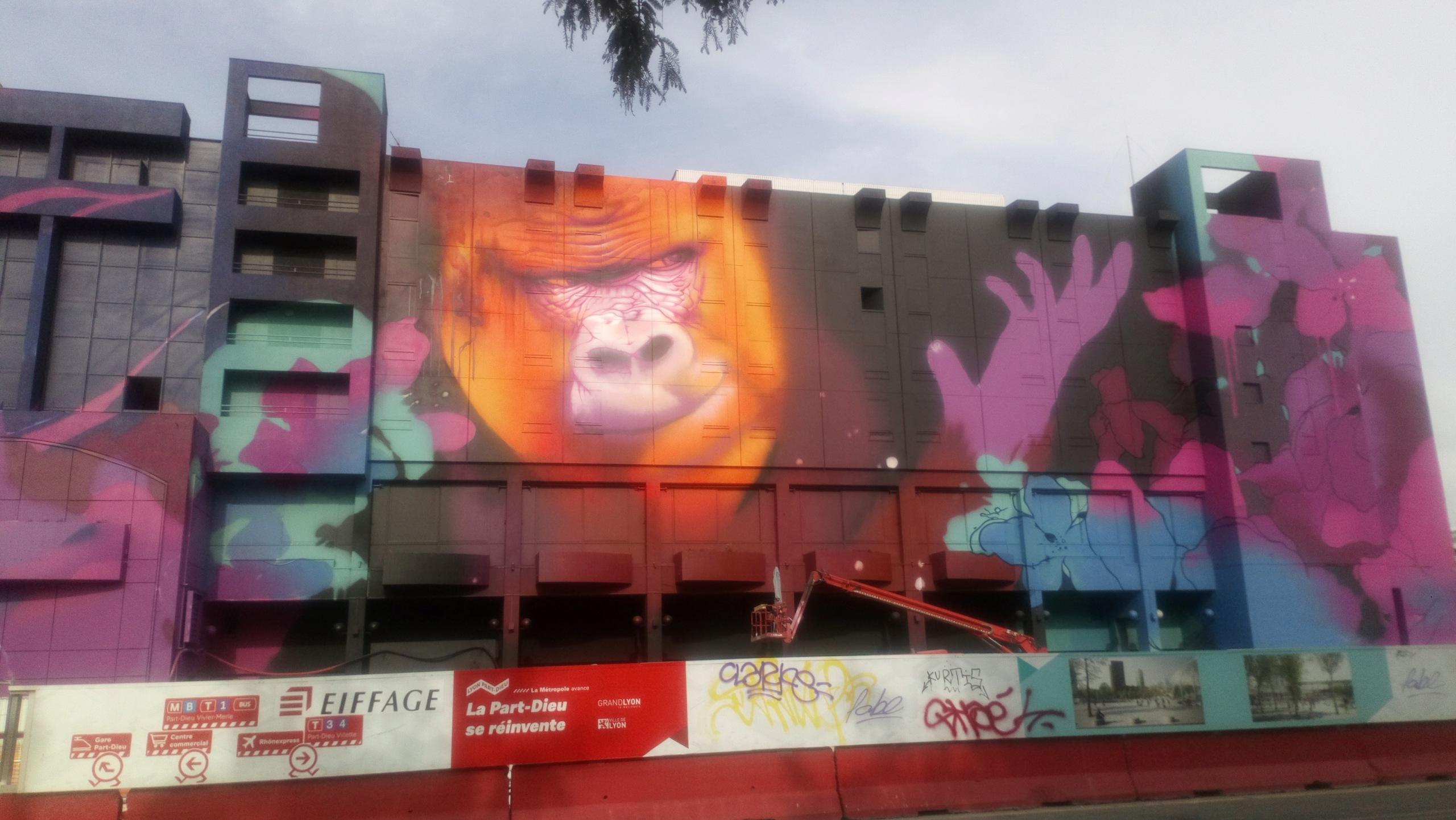 [street art-rue et manifs] Peinture fraîche, à Lyon 2019 - Page 12 Dsc_0886