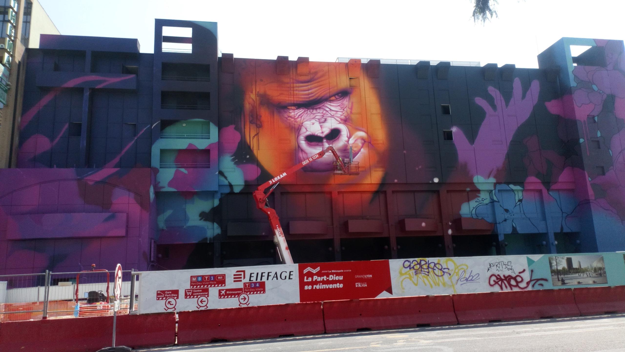 [street art-rue et manifs] Peinture fraîche, à Lyon 2019 - Page 12 Dsc_0889