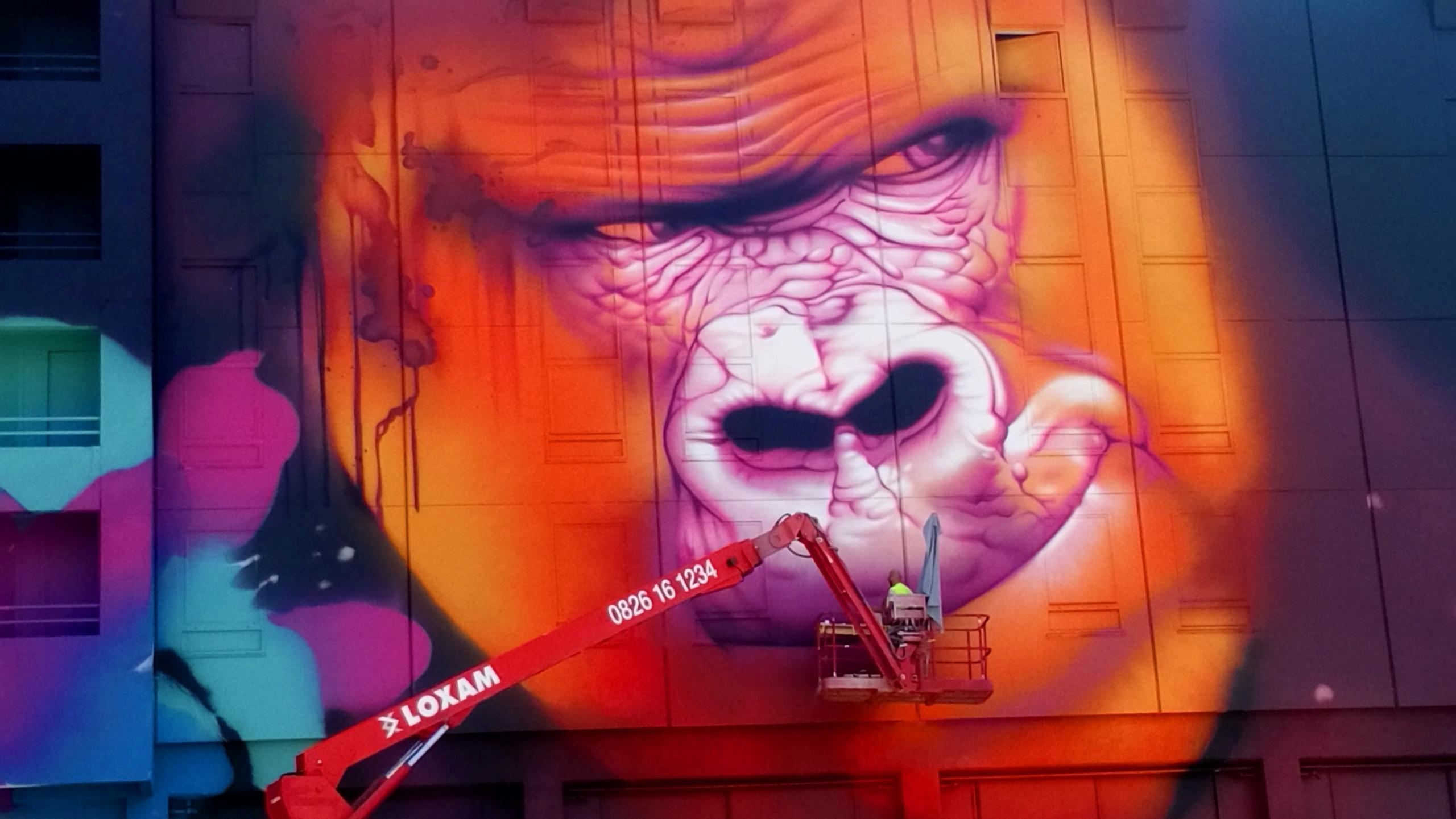 [street art-rue et manifs] Peinture fraîche, à Lyon 2019 - Page 12 Dsc_0891