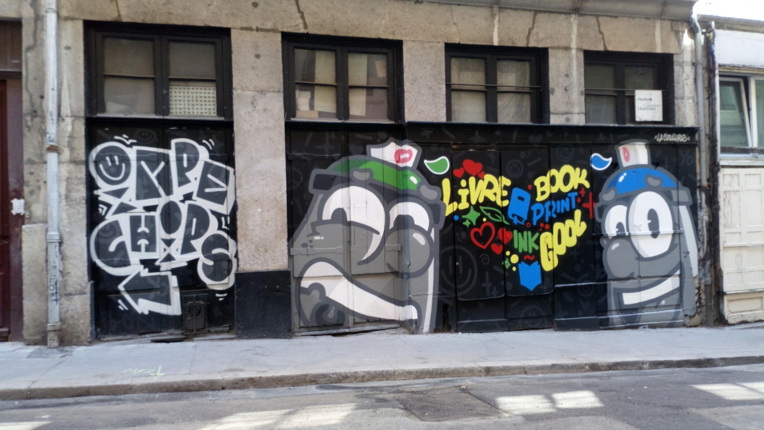 [street art] Peinture fraîche, à Lyon - Page 2 Dsc_0912