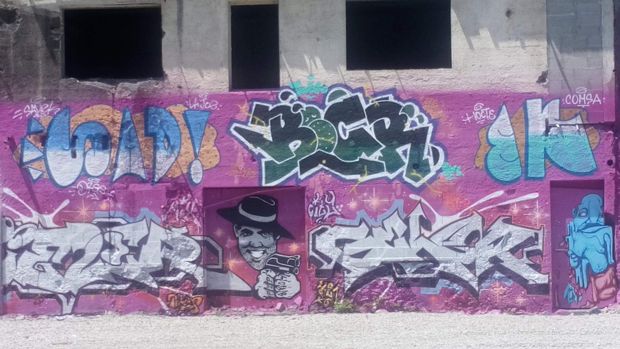 [street art-rue et manifs] Peinture fraîche, à Lyon 2019 - Page 10 Dsc_0918