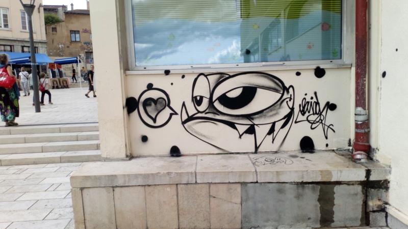 [street art-rue et manifs] Peinture fraîche, à Lyon 2019, 2020 ET 2021 - Page 15 Dsc_0931