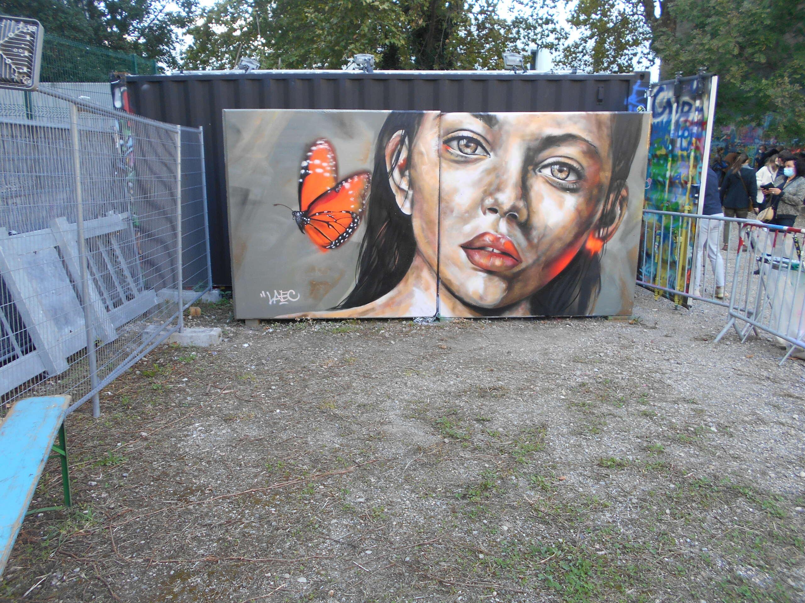 [street art-rue et manifs] Peinture fraîche, à Lyon 2019, 2020 ET 2021 - Page 19 Dscn4012