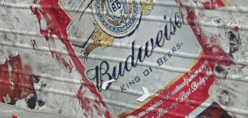 La Bière dans tous ses états Q37