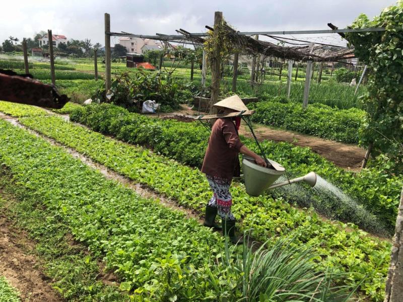 Voyages culinaires et philosophiques (suite) à Da Nang, vietnam - Page 18 Recei134