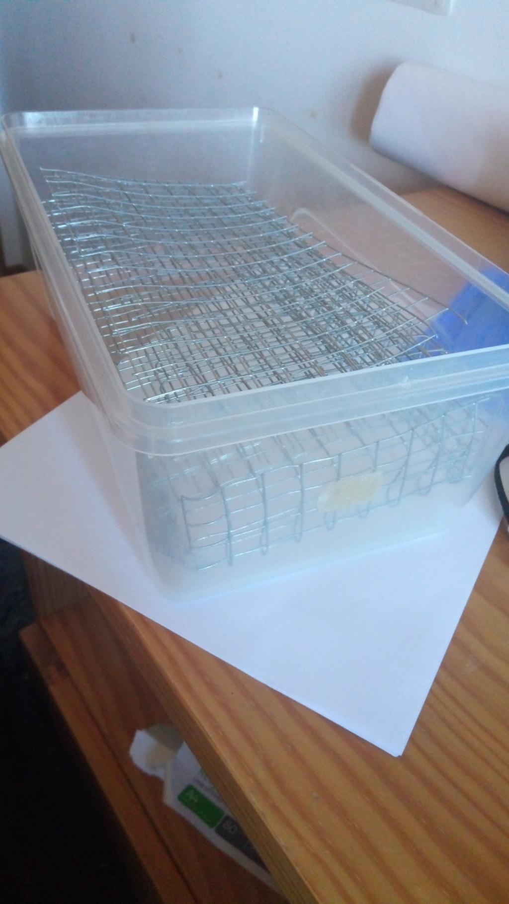 Guia para cultivo de hongos psilocibios con kit  P8100311