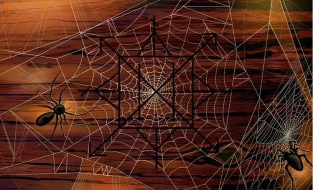 Паучьи сети Soo11