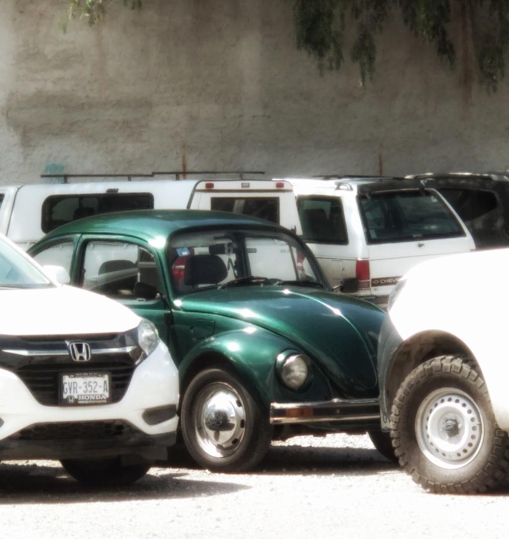 algunas imagenes de mi VW escarabajo, vocho, fusca Img_2010