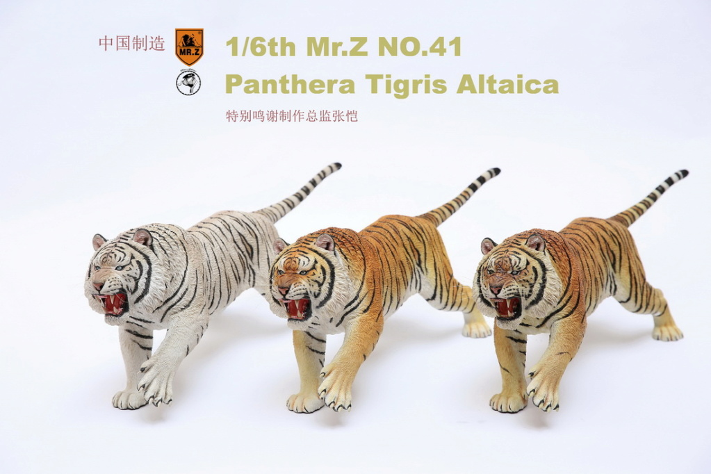 NEW PRODUCT: MR. Z: 1/6 Simulation Animal Model 41st - Siberian Tiger / Siberian Tiger [Planting Edition] - Full set of 3 colors 00024110