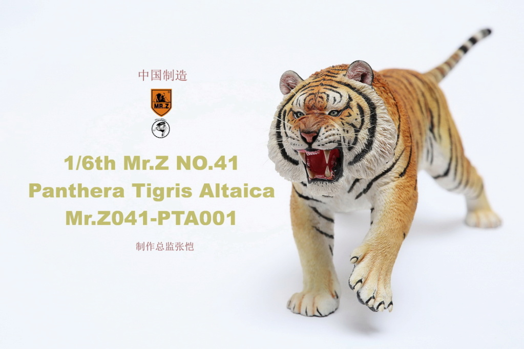 NEW PRODUCT: MR. Z: 1/6 Simulation Animal Model 41st - Siberian Tiger / Siberian Tiger [Planting Edition] - Full set of 3 colors 00044711