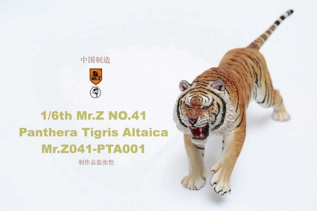 NEW PRODUCT: MR. Z: 1/6 Simulation Animal Model 41st - Siberian Tiger / Siberian Tiger [Planting Edition] - Full set of 3 colors 00044810