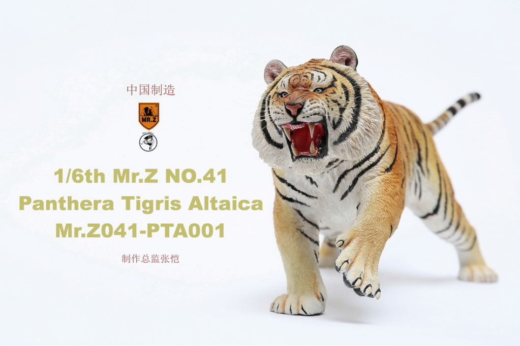 NEW PRODUCT: MR. Z: 1/6 Simulation Animal Model 41st - Siberian Tiger / Siberian Tiger [Planting Edition] - Full set of 3 colors 00044910