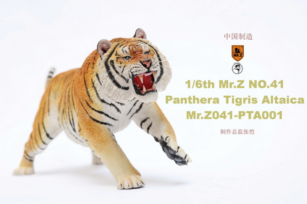 NEW PRODUCT: MR. Z: 1/6 Simulation Animal Model 41st - Siberian Tiger / Siberian Tiger [Planting Edition] - Full set of 3 colors 00045010