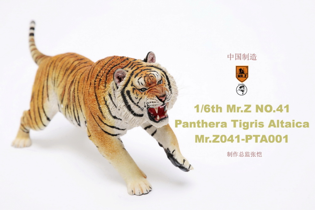 NEW PRODUCT: MR. Z: 1/6 Simulation Animal Model 41st - Siberian Tiger / Siberian Tiger [Planting Edition] - Full set of 3 colors 00045011