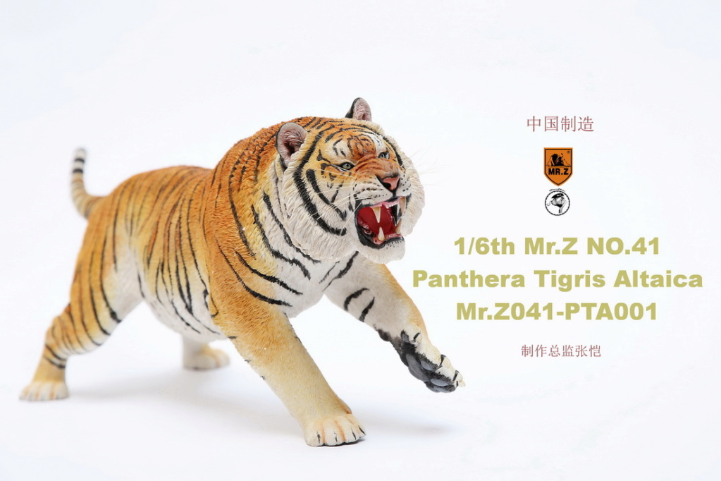 NEW PRODUCT: MR. Z: 1/6 Simulation Animal Model 41st - Siberian Tiger / Siberian Tiger [Planting Edition] - Full set of 3 colors 00045012