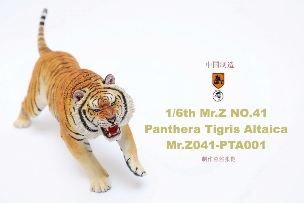 NEW PRODUCT: MR. Z: 1/6 Simulation Animal Model 41st - Siberian Tiger / Siberian Tiger [Planting Edition] - Full set of 3 colors 00045110