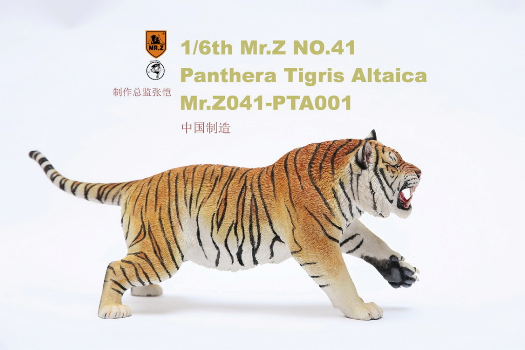 NEW PRODUCT: MR. Z: 1/6 Simulation Animal Model 41st - Siberian Tiger / Siberian Tiger [Planting Edition] - Full set of 3 colors 00045111
