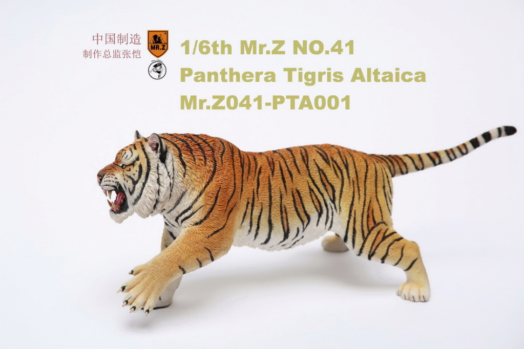 NEW PRODUCT: MR. Z: 1/6 Simulation Animal Model 41st - Siberian Tiger / Siberian Tiger [Planting Edition] - Full set of 3 colors 00045112